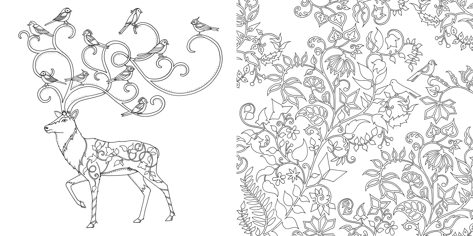 Enchanted Forest: An Inky Quest and Coloring Book - A2Z ...